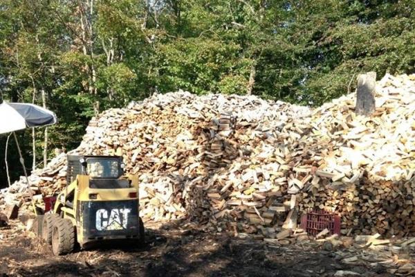 firewood4527A0CC0-C673-D6A8-E87F-C5DA66809162.jpg