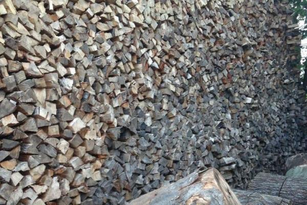 firewood555BE59D1-929A-ECE6-765A-C9A7DC7B7F77.jpg